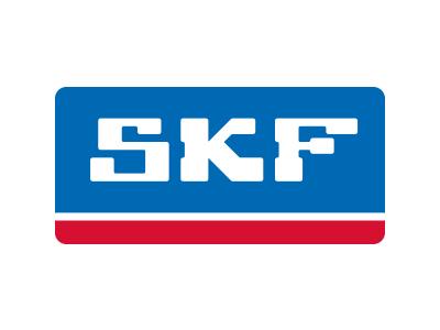 SKF, Estándar